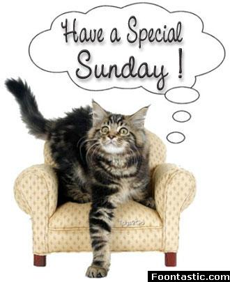 have a special sunday Orkut scraps Sunday scraps and graphics have a special sunday scrapbook animations and orkut codes